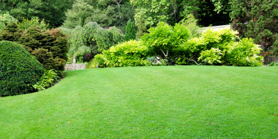 Lawn Care Pictures Free Free Kitsap County Lawn Care